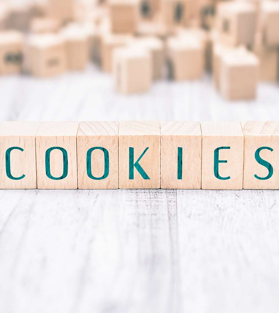 COOKIE POLICY FOR THE HOLIDAY MOTEL WEBSITE